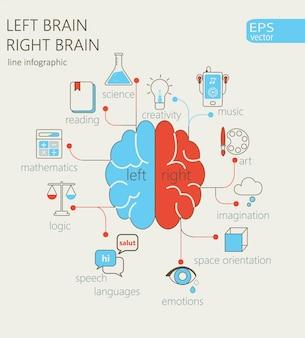 Conceito de cérebro esquerdo e direito.