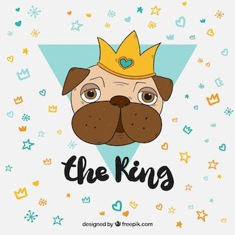 Conceito divertido com o rei dos pugs