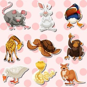 Conjunto de adesivos com diferentes tipos de animais