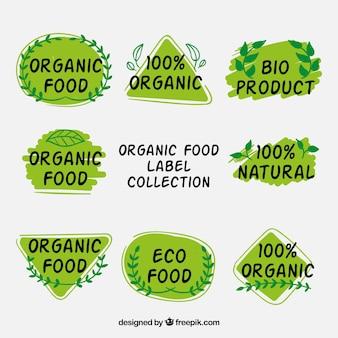 Conjunto de adesivos ecológicos com detalhes naturais