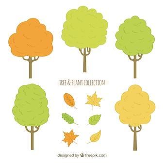 Conjunto de árvores desenhadas a mão e folhas