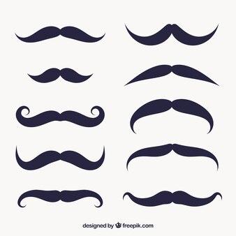 Conjunto de bigode decorativo