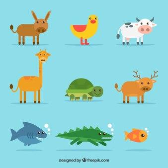 Conjunto de bons animais