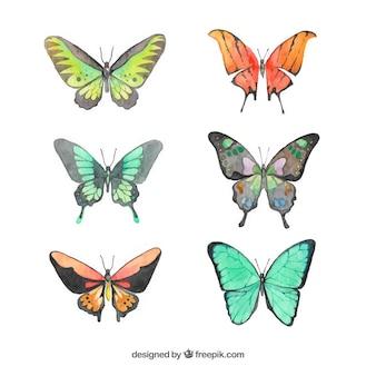 Conjunto de borboletas de aquarela