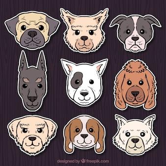 Conjunto de cão adesivos desenhados à mão