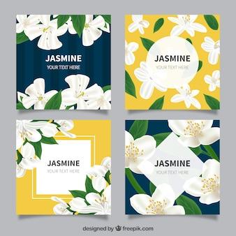 Conjunto de cartões de jasmim