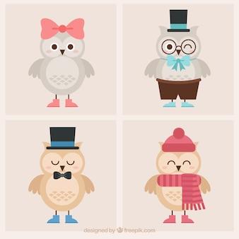 Conjunto de corujas bonitos com roupas e elementos