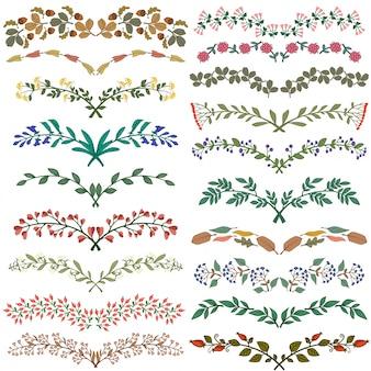 Conjunto de divisores na natureza ilustração vetorial design