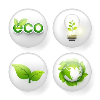Conjunto de elementos ecológicos.
