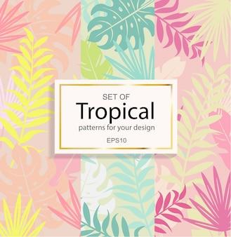 Conjunto de fundo tropical moderno para o seu design.