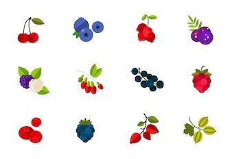 Conjunto de ícones de bagas selvagens e cultivadas