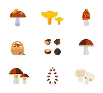 Conjunto de ícones de cogumelos