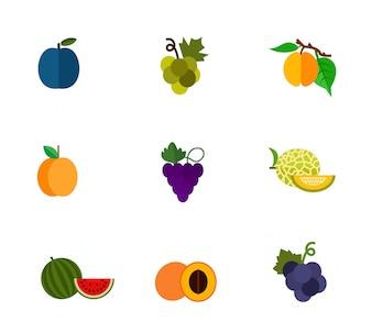 Conjunto de ícones de frutas e bagas