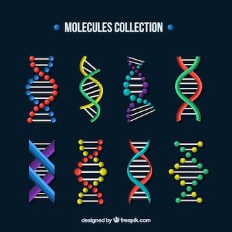 Conjunto de moléculas e estruturas de DNA