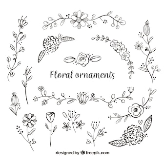 Conjunto de ornamentos de flores desenhados à mão