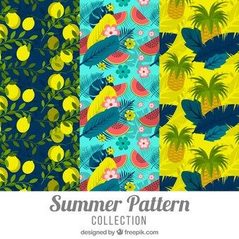 Conjunto de padrões de verão alegres