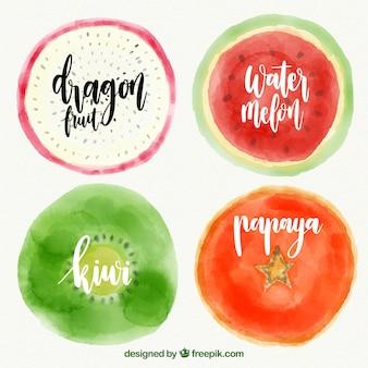 Conjunto de quatro frutas pintadas com aquarela