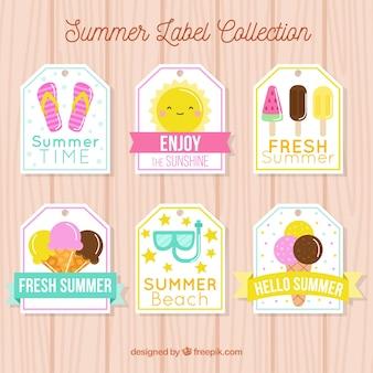 Conjunto de seis etiquetas de verão