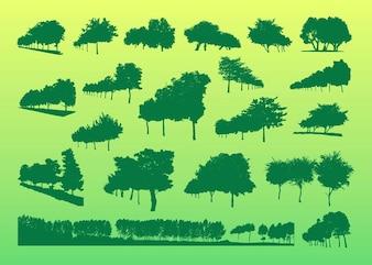Conjunto de silhuetas árvores verdes