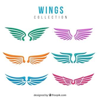 Conjunto decorativo colorido das asas