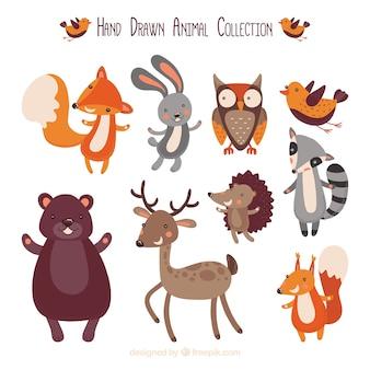 Conjunto desenhado mão de animais felizes