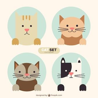 Conjunto gato adorável