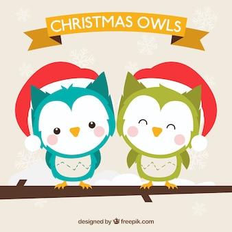 Corujas bonito do Natal