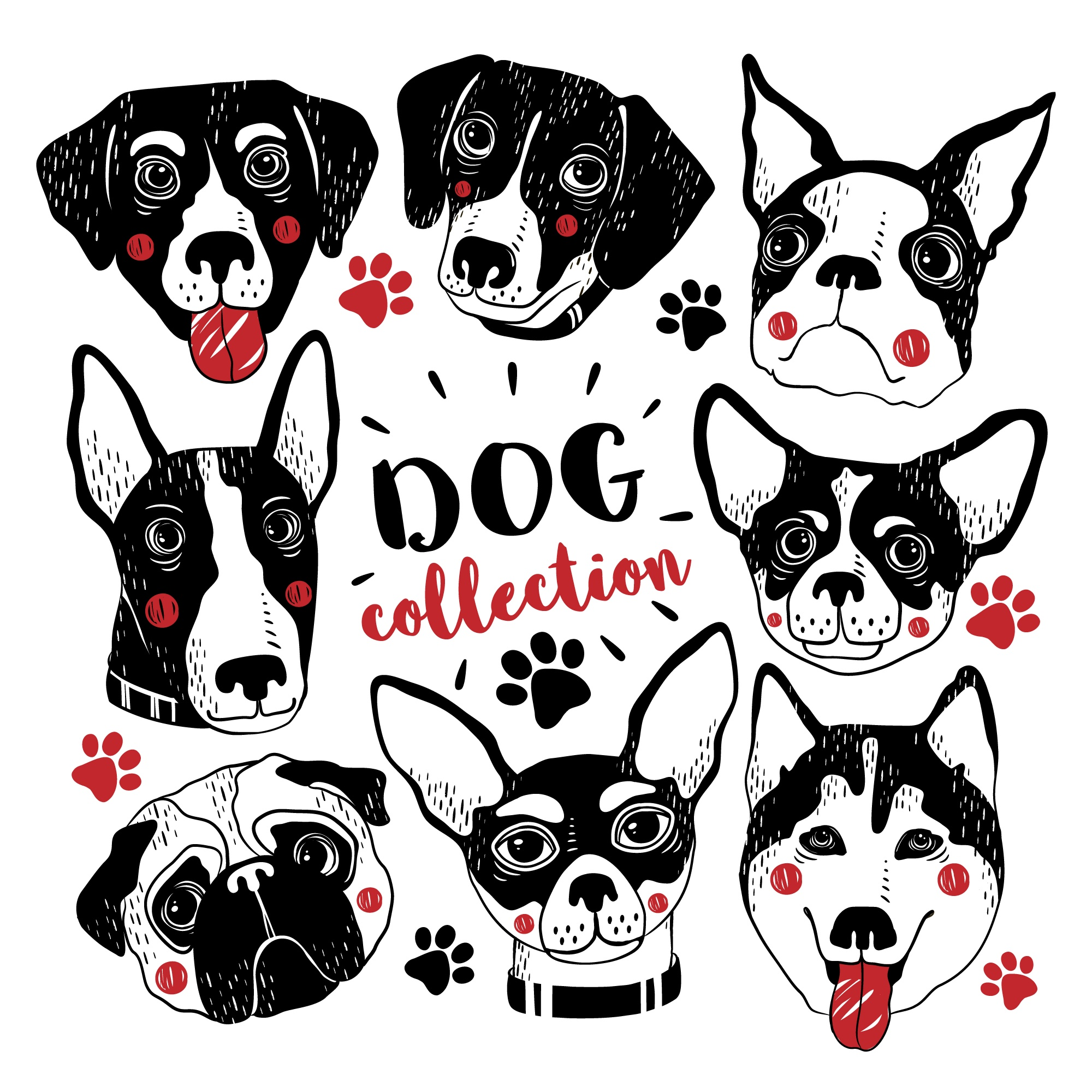 Cute hand drawn dogs collection