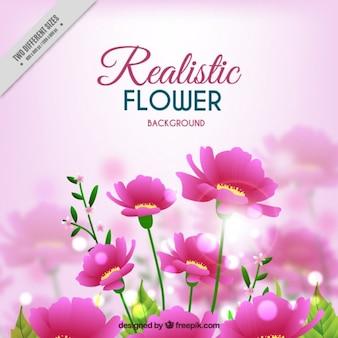 -De-rosa flores fundo em estilo realista