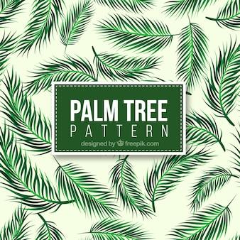 Decorativo, padrão, realístico, palma, árvore, folhas