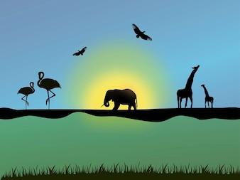 descoberta de aves e animais africanos vector