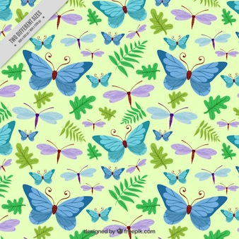 Desenhadas mão borboletas e libélula com folhas de fundo