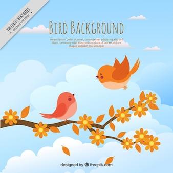Desenho bonito dos pássaros em uma filial fundo