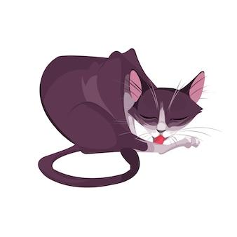 Design de gato isolado