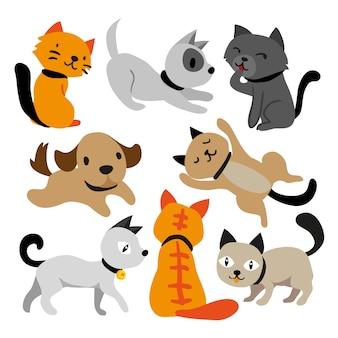 Design de personagem de gato e cachorro