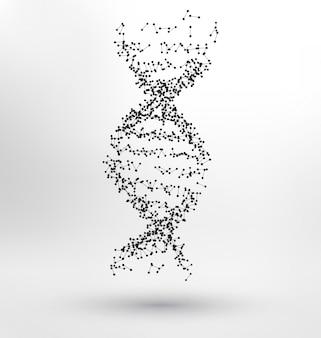 DNA humano abstrato