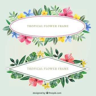Dois molduras de flores de aquarela vintage