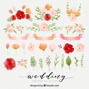 Elementos florais de aquarela