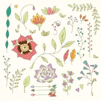 Elementos florais decorativas