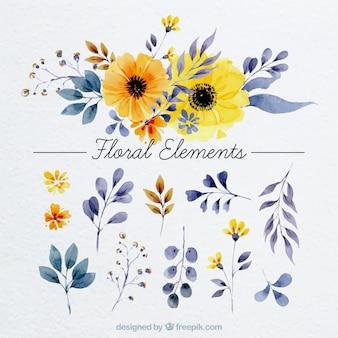 Elementos florais no estilo da aguarela