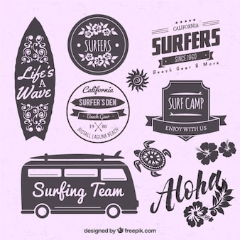 Emblemas cerca de surf em um fundo roxo