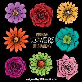 Entregue as flores desenhadas ilustração