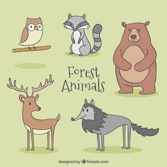 Esboços agradáveis personagens animais selvagens