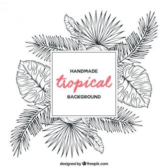 Esboços plantas tropicais fundo