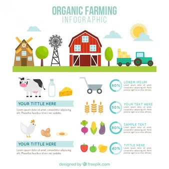Fazenda bonito com ferramentas agrícolas infografia