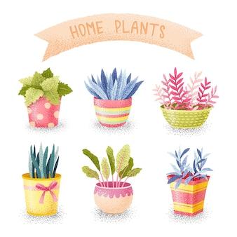 Flores em conjunto de potes