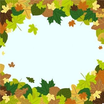 Folhas de outono no vento