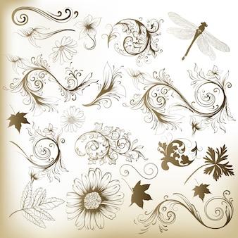 Folhas e flores decorativas