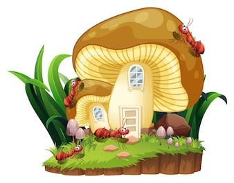Formigas vermelhas e casa de cogumelos no jardim
