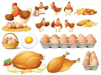 Frango e diferentes tipos de produtos de frango